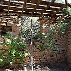 Inside old Miners Cabin Reno Nevada USA by Anthony & Nancy  Leake
