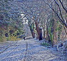 Fox & Pin Lane, Nowton,Bury St Edmunds.  by dellray