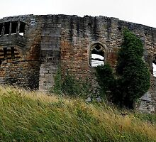 Barnard Castle Panoramic by Andrew Pounder