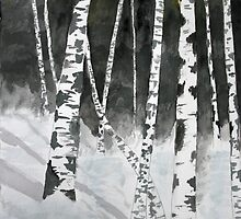 Birch tree art print by derekmccrea