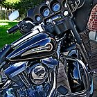96 HARLEY TOURING by Fran James
