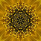Sun-Design ~ Kaleidoscope by Jan  Tribe