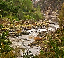 Cataract Gorge, Launceston, Tasmania, Australia by TonyCrehan