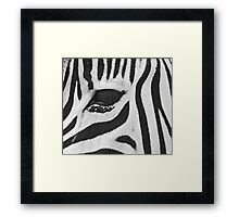Lux Lashes III Framed Print