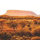 Mount Connor, Northern Territory, Australia.  by George Petrovsky