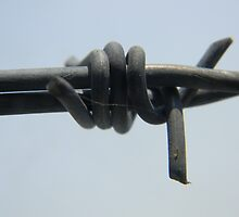 Barbed Wire by VixenFirepaw