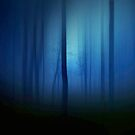 Forest in blue'... by Valerie Anne Kelly
