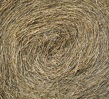 Hay Bale abstract by Sue Robinson