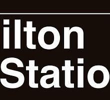 NYC Fort Hamilton Parkway Station - F by axemangraphics