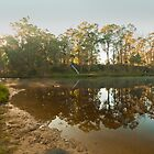 Blackwood River Reflections, Western Australia by Elaine Teague