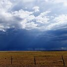 Prairie Rain by Gregory Collins