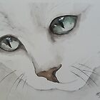 white kitty by marie stewart