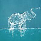 The Water Elephant by BelleFlores