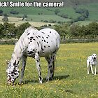 Smile for the camera! by caitlin2005