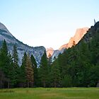 Yosemite Valley Floor by TimCatteraPhoto