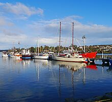 Fishing boats, St Helens, Tasmania, Australia by Margaret  Hyde