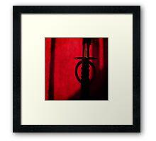Ronin Framed Print