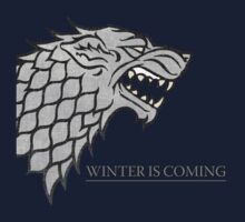 Winter is coming by arrow3