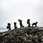 Camping on the Coast by bricksailboat