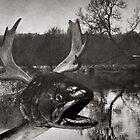 Salmon Moose by Bill Blair