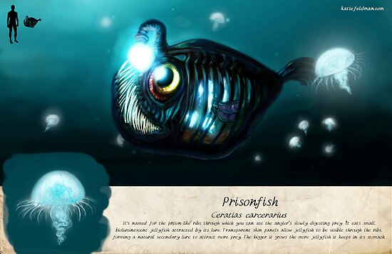The Prisonfish by Katie Feldman