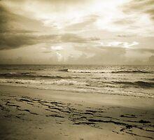 Georgia Coast Storm by Katya laRoche