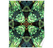 Aquatic Lace 10 Poster