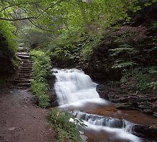 Upper Tier of Mohican Falls by Gene Walls