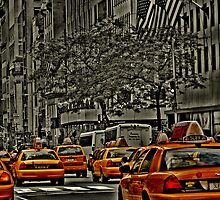 Rear View of Yellow Cabs on 5th Ave by jalfc46