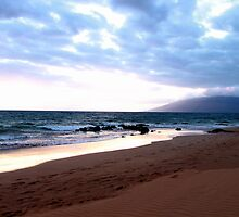 Hawaiian Beach at Sunset by picsbytabitha