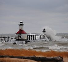 St Joseph North Pier Lighthouse - 24 by Debbie Mueller
