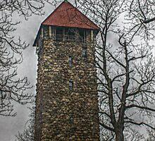 Villa Walsh Tower, Morristown NJ by Jane Neill-Hancock