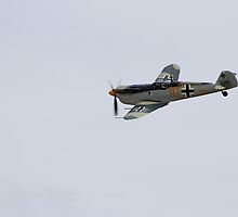 Buchon by Elliot2970