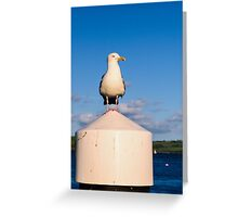 Harbour Master Greeting Card