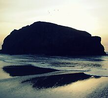 Bandon Rock by EvelynR