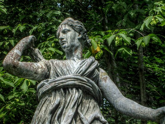 Closeup of Diana, the Goddess of the Hunt and Wood by Jane Neill-Hancock