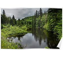 Forest Lake - Charlevoix, Quebec, Canada Poster