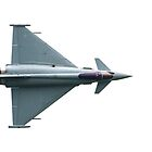 The Eurofighter Typhoon by willgudgeon