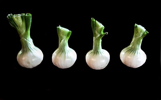 Dancing Onions! by heatherfriedman
