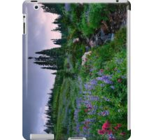 Dead Horse Creek Dawn iPad Case/Skin