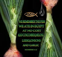 ☝ ☞ WE REMEMBER BIBLICAL☝ ☞PLZ READ VERSE THE ONION TY HUGS☝ ☞ by ✿✿ Bonita ✿✿ ђєℓℓσ