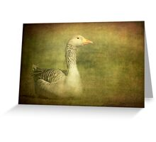 The Eye of the Goose Greeting Card