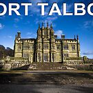 Port Talbot Postcard - Margam Castle by digihill