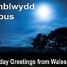 Penblwydd Hapus - Happy Birthday from Wales - Moonlight Field by digihill
