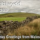 Penblwydd Hapus - Happy Birthday from Wales - Buarth Y Gaer by digihill