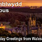 Penblwydd Hapus - Happy Birthday from Wales - Margam Night by digihill