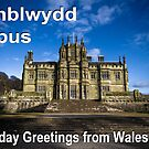 Penblwydd Hapus - Happy Birthday from Wales - Gothic Margam by digihill