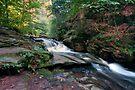 Gentle Flow Over Conestoga Falls by Gene Walls