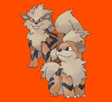Arcanine and Growlithe by Stephen Dwyer