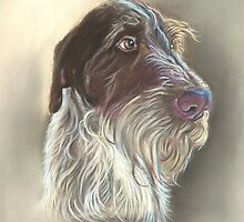German Wire haired Pointer by Jane Smith